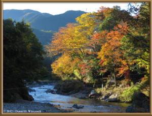 Nov10_242_Sawai_MitakeFallColorsRC