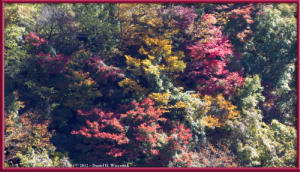 Nov10_47_OkutamaLakeAreaFallColorsRC