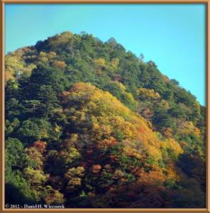 Nov18_20_21_Panorama_HigashiNipparaRoad_FallColorRC