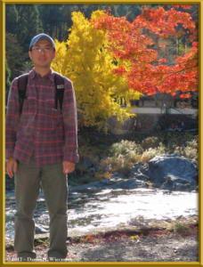 Nov18_243_MitakeSawai_FallColor_GinkgoRC