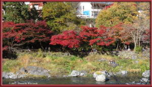 Nov18_270_MitakeSawai_FallColorRC