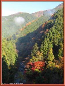 Nov18_37_HigashiNipparaRoad_FallColorRC