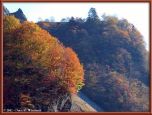 Nov18_58_HigashiNipparaRoad_FallColorRC