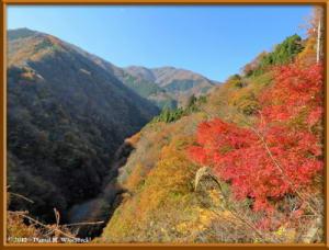 Nov18_77_HigashiNipparaRoad_FallColorRC