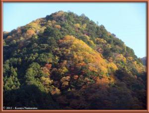 Nov18th_19_HigashiNipparaRoadFallColorsRC