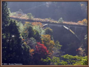 Nov18th_31_HigashiNipparaRoadFallColorsRC