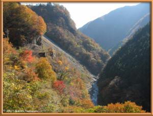 Nov18th_75_HigashiNipparaRoadFallColorsRC