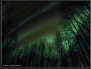 Nov4th_004Curves2_SteeleCreekRd_AuroraRC