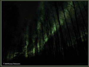 Nov4th_007Curves_SteeleCreekRd_AuroraRC