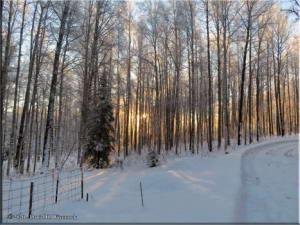 Nov17_01_SnowyWalkFromHomeRC