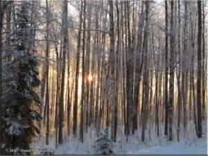 Nov17_02_SnowyWalkFromHomeRC