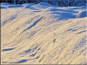 Nov17th_010_SnowRC