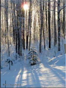 Nov18th_009_SnowRC