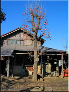 ShinKoganeiOldHouse02.jpg
