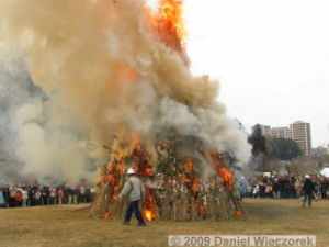 Jan18_TamaSakaiNewYearBonfire17RC.jpg