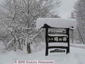 Dec31st_TsuruNoYu099RC