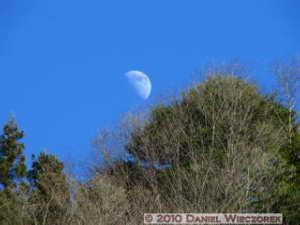 Jan24_KawanoriTrail_Moon02RC