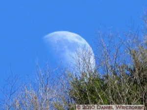 Jan24_KawanoriTrail_Moon03RC