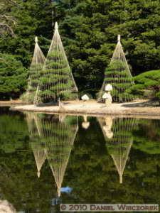 Jan30_JindaiBotGar008_Pond_ReflectionRC