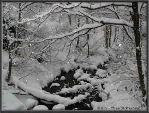 Dec31_35FR_TsuruNoYuRoad_NYearTripRC