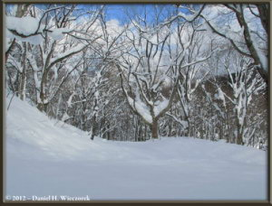 Dec31_WalkingToTsuruNoYu_HotSpring_83RC