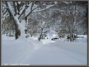 Dec31_WalkingToTsuruNoYu_HotSpring_85RC