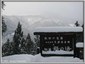 Dec31st065_TsuruNoYuRC