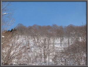 Dec31st110_TsuruNoYuRC