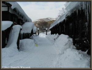 Jan1_TsuruNoYu_Outdoors_08RC