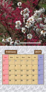 2014 Photo Calendar - Japan's Flowers, Plants & Trees - The February Page