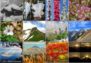 2014 Photo Calendar Showing Japan Mountains and Mountain Flowers - The Photos
