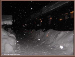 Dec31st_13_TsuruNoYu_NightRC