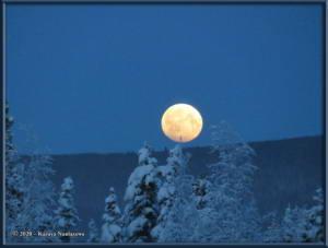 Jan10th_003_MoonRC