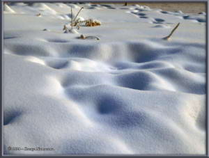 Jan12th_001_SnowRC