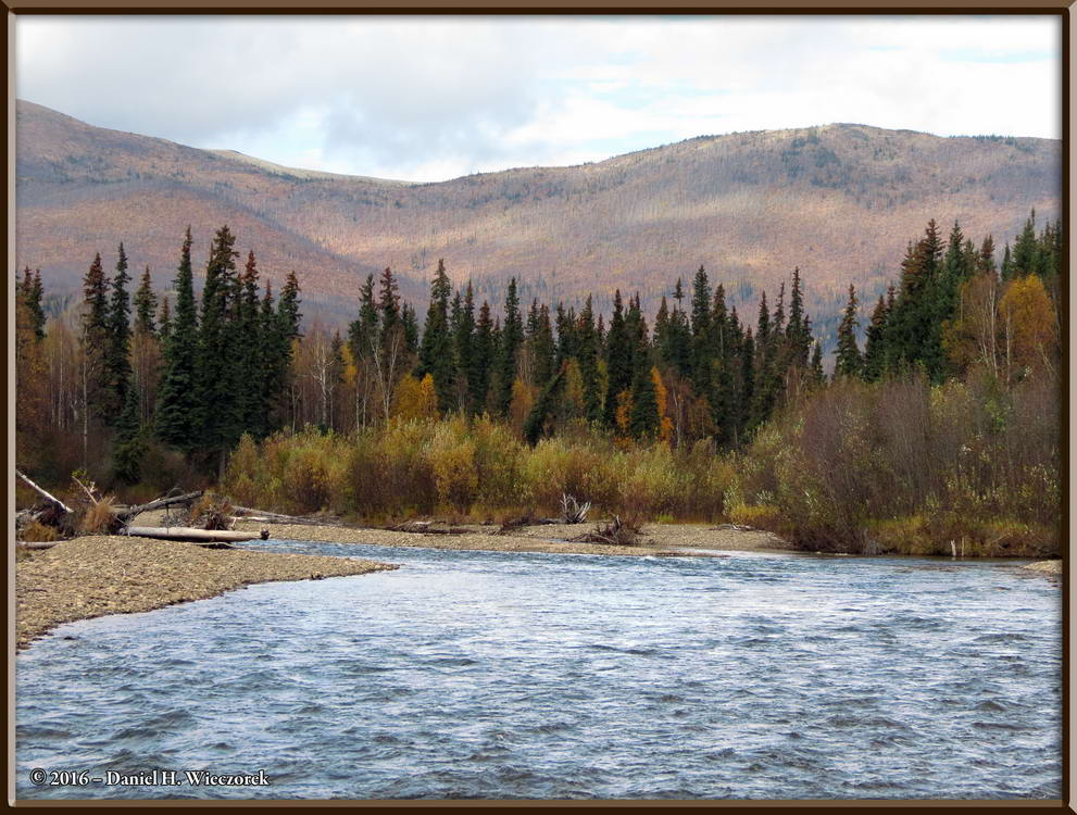 Upper Chena River - Near Milepost 49, Chena Hot Springs Road