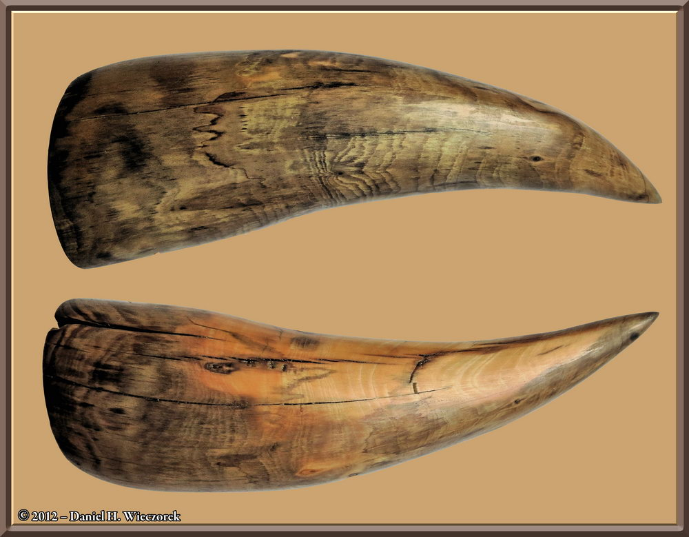 A Powderhorn Knot