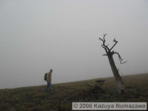 May08_YamanakaLkMtMyoujinBurnedGrass_Dan17RC.jpg