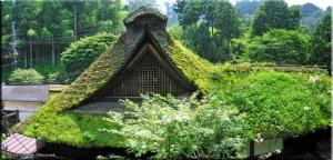 MtMitake17_GrassRoof02_03PanoramaRC.jpg