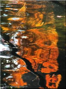 Dec08_TonogayatoGardens_FallColors55sRC.jpg