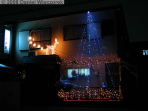 Dec23_NeighborXmasLights03RC.jpg