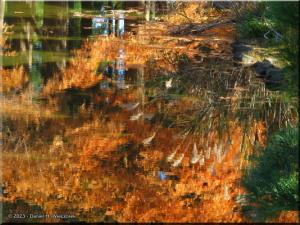 Nov30_JindaiBG_FallColor_098RC.jpg