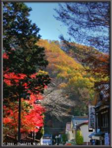 Dec4_17_18_19_TMDE_TakaoSanGuchiFallColorsRC