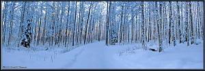 Dec18_09_10_AutoPano_Adj_SnowStormRC