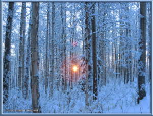 Dec18_14_SnowStormRC