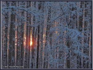 Dec19_3_Sun_SnowRC