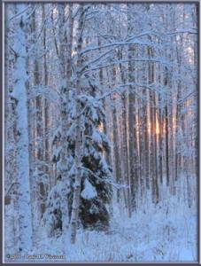 Dec19_4_Sun_SnowRC