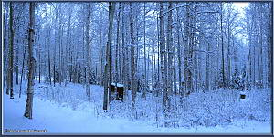 Dec2_06_07_AutoPano_SnowyYard_2RC