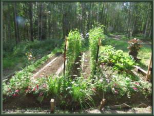 July30_1_GardenRC