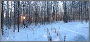 Nov26_01_02_AutoPano_SnowyPropertyRC