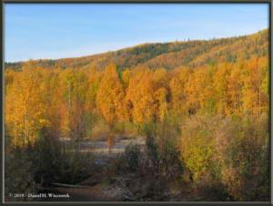 Sept10_33_AutumnColor_CHSRRC